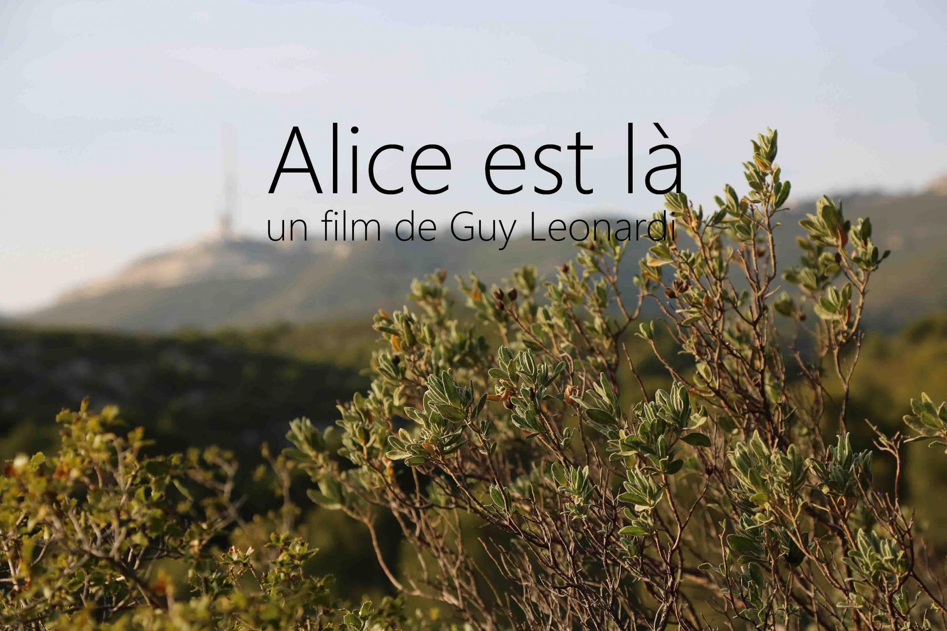 Alice est là